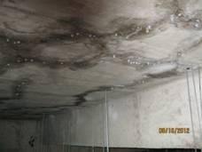 种植屋面漏水的治理
